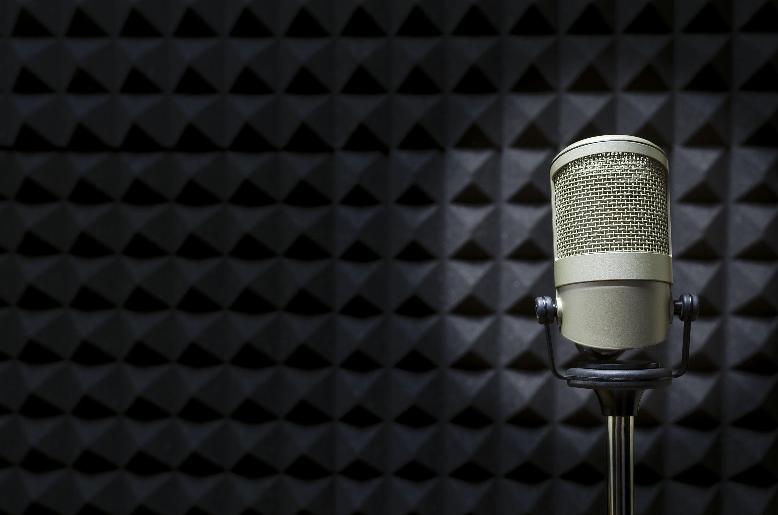 microphone in studio, Industry Insider: Tamara Lewis