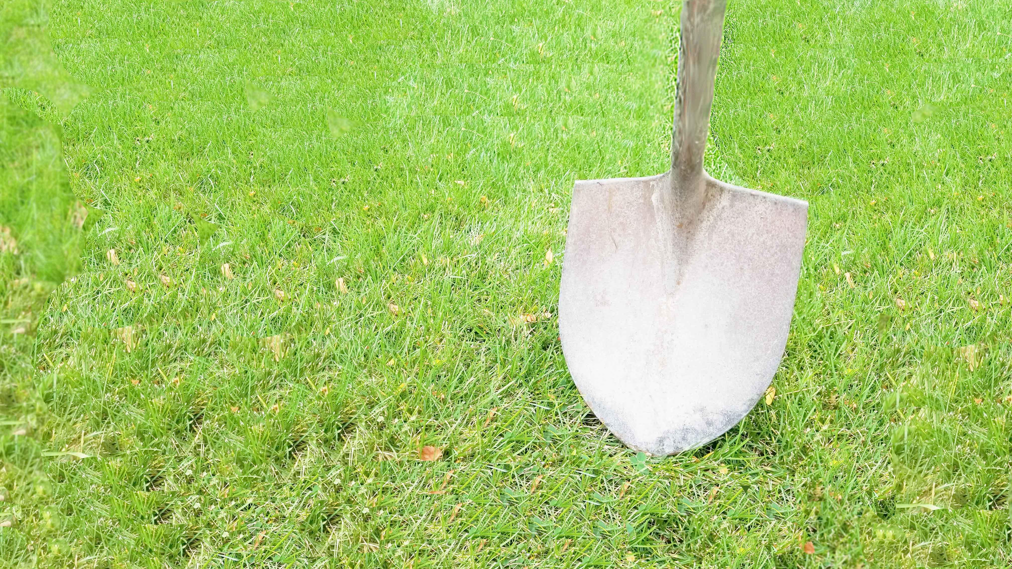 Shovel Hitting Grass - Groundbreaking Innovations in Testing History